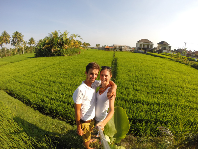 Tarasy ryżowe wIndonezji